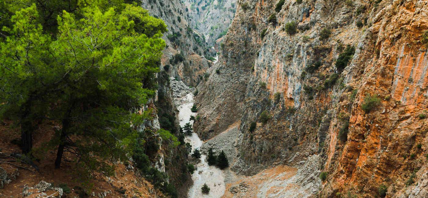 trekking_mountain